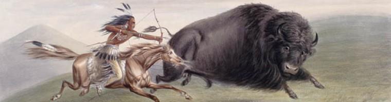 https://buffalohair.files.wordpress.com/2009/08/cropped-buffalo_hunt.jpg
